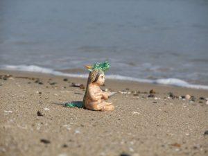 津屋崎に来て最初の海遊びは潮干狩りでした。