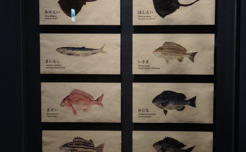 ひさびさ京都(4)京都水族館