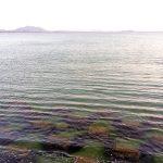 津屋崎には潮湯がある。