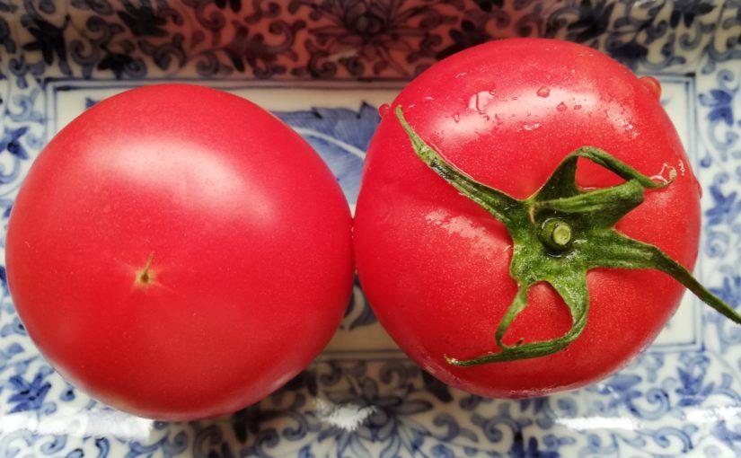 トマトがおいしい。