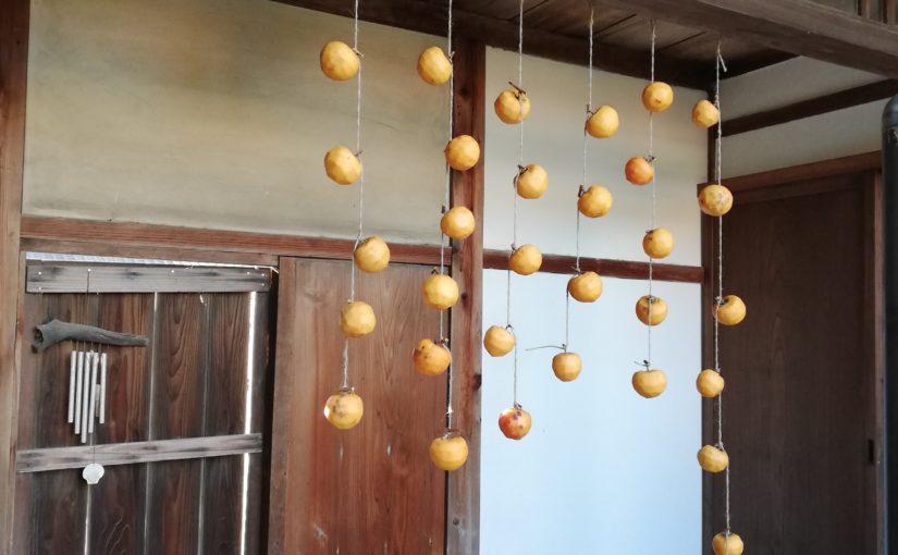 今年も干し柿。