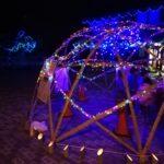 ご近所イベントの暖かさ~小さな町の小さな灯り展2020~