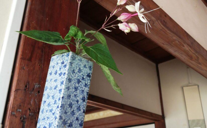 野花と染付牡丹唐草文一輪挿し 藤吉憲典